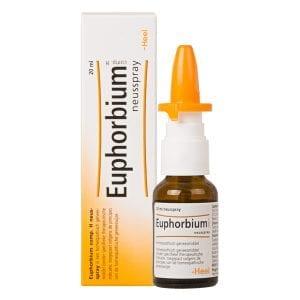 Heel Euphorbium Neusspray 20 ml | Zussb